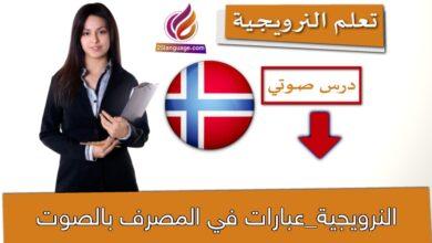 النرويجية_عبارات في المصرف بالصوت