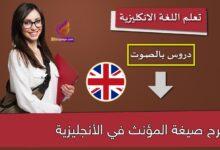 شرح صيغة المؤنث في الأنجليزية